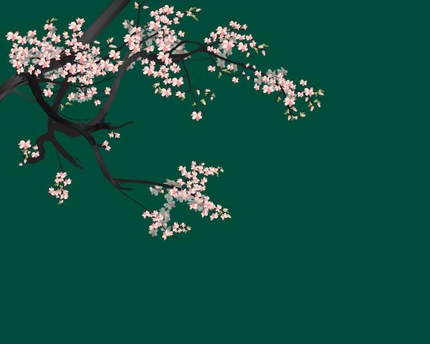Watercolor sakura frame