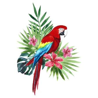 Watercolor scarlet macaw parrot with tropical palm leaves and flowers
