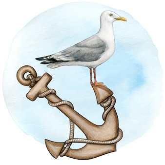 Watercolor seagull resting on a vintage anchor