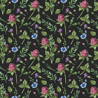 Watercolor seamless floral pattern. wildflowers, camomile, leaves and herbs on a black background