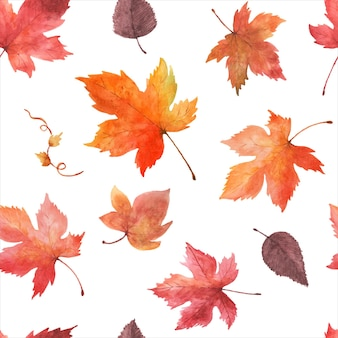 白い背景の上の水彩画のシームレスなパターンの紅葉。カエデの葉で手描きされた水彩画は、秋のお祭り、招待状、カード、壁紙の装飾のためのアートデザインを残します。包装。