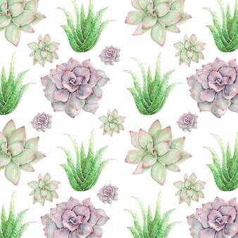 水彩のシームレスパターンサボテンの花とアロエベラ