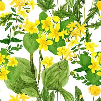 수채화 원활한 패턴, 야생 필드 꽃과 허브