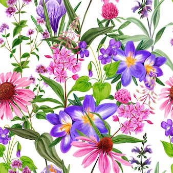 Watercolor seamless pattern, wild field flowers and herbs