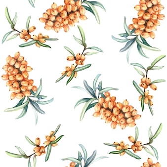 Watercolor seamless pattern with berries of sea-buckthorn