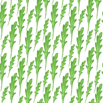 Watercolor seamless pattern with green leaves of arugula on white background. hand paint vector illustration.