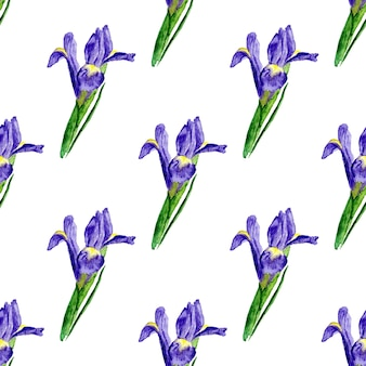 Watercolor seamless pattern with lilac iris. painted vector background. vector background texture for fabric, gift paper, textile