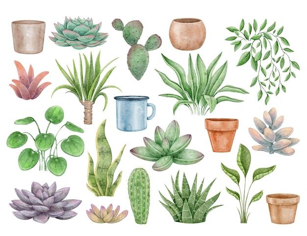수채화 세트 집 식물과 냄비 선인장