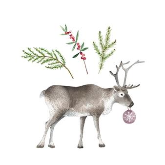 크리스마스 장식과 순록 벡터 수채화를 위한 나뭇가지의 수채화 세트