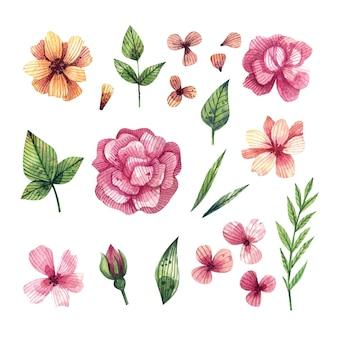 Акварель набор ярких цветов и листьев, нарисованный от руки.