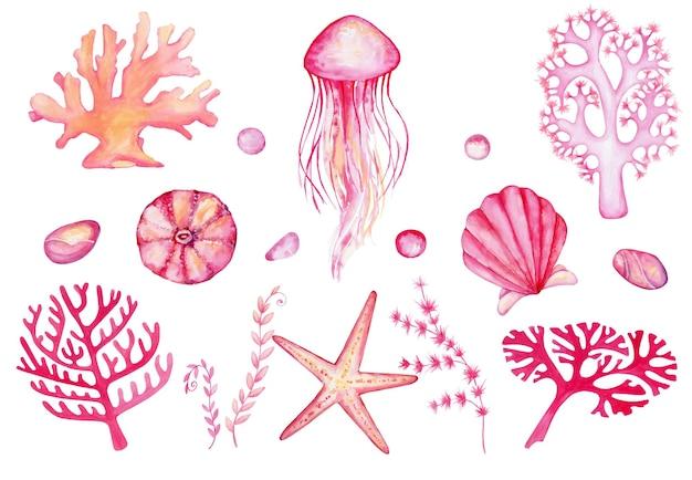 水中世界の要素の水彩セット。孤立した背景に手描きのサンゴ、クラゲ、岩、ヒトデ、貝殻。