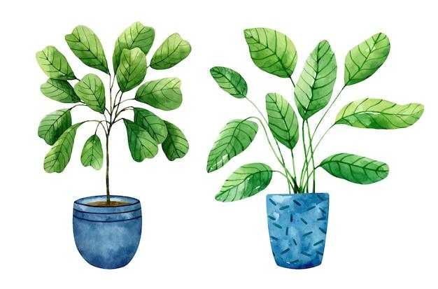흰색 배경에 고립 된 푸른 화분에 실내 식물의 수채화 세트