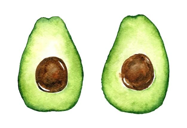 Акварельный набор из двух половинок зеленого свежего авокадо с семенами. здоровая пища.