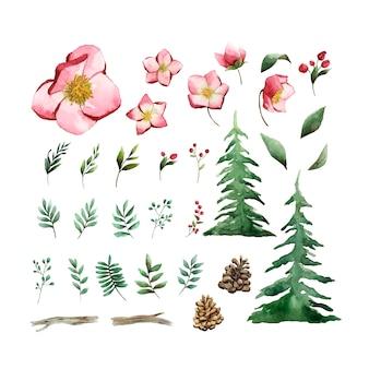 Акварельный набор зимних цветов и листьев вектор