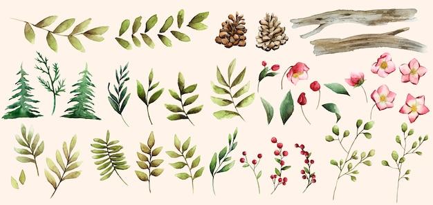 冬の花と葉ベクトルの水彩セット