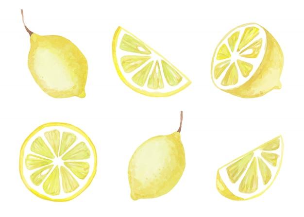 白い背景に分離された黄色いレモンの水彩セット。ベクトルイラスト