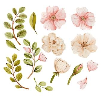 Акварельный набор с розовыми цветами и листьями