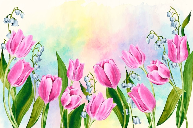 Watercolor spring background with colorful tulips