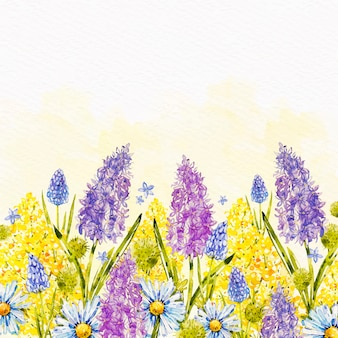 Watercolor spring background with hyacinths