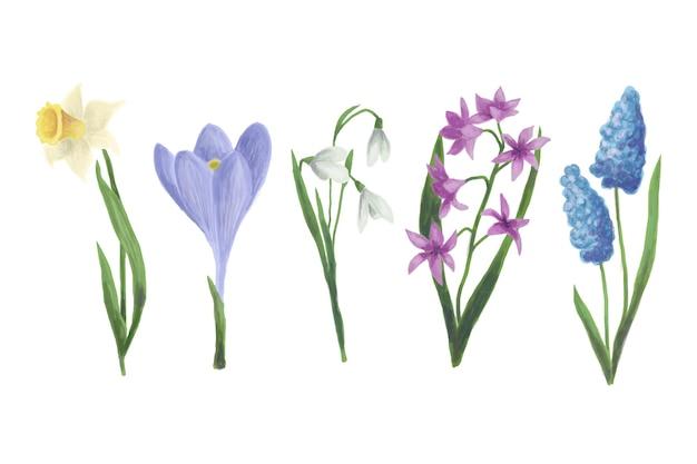 Акварель весенний цветочный пакет