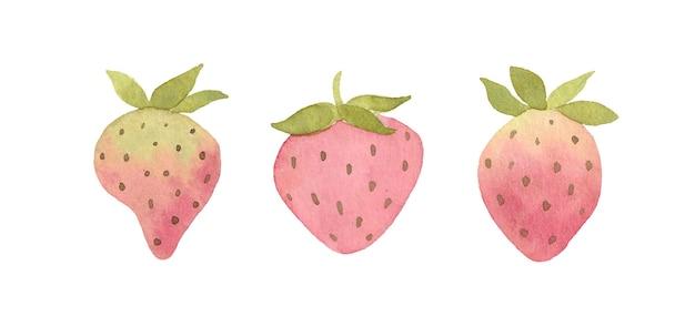 수채화 딸기