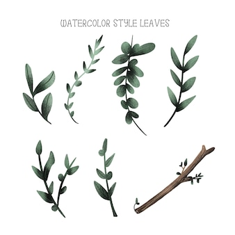 Watercolor style leaves, hand drawn collection