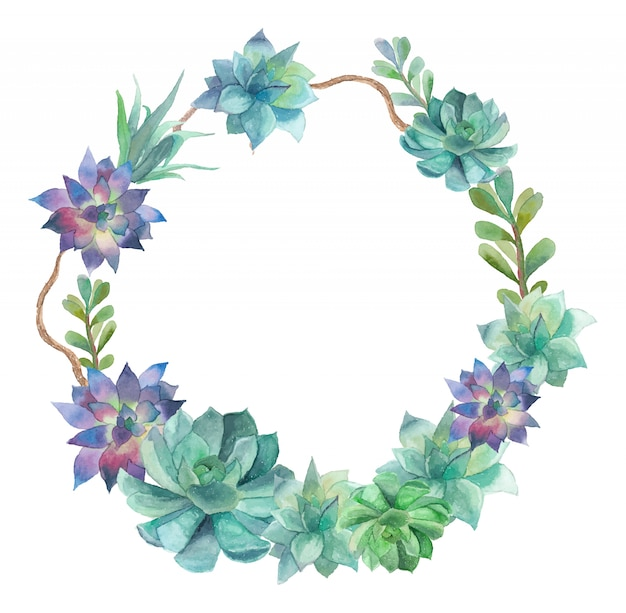 Watercolor succulent wreath. round  frame