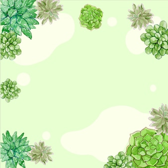 Watercolor succulents simple background and frame