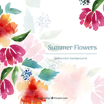 Watercolor summer flowers background