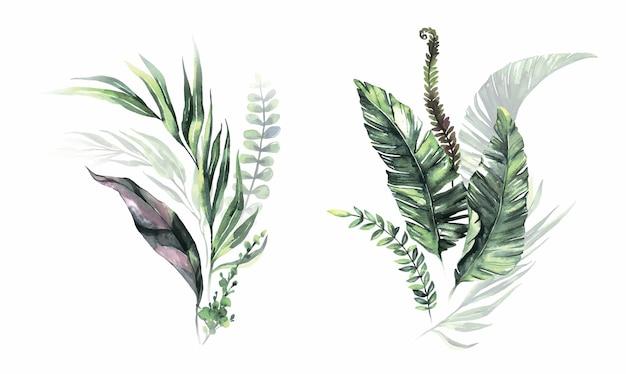 Акварель летние тропические букеты
