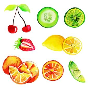 Watercolor Summner Fruits Collection