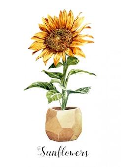 Watercolor sunflower in a flower pot