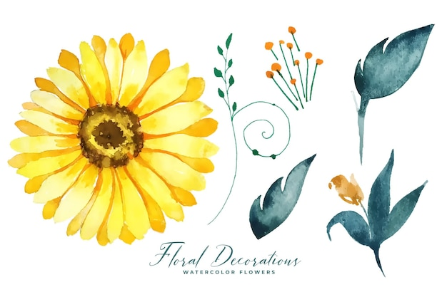 Watercolor sunflower and leaves collection elements