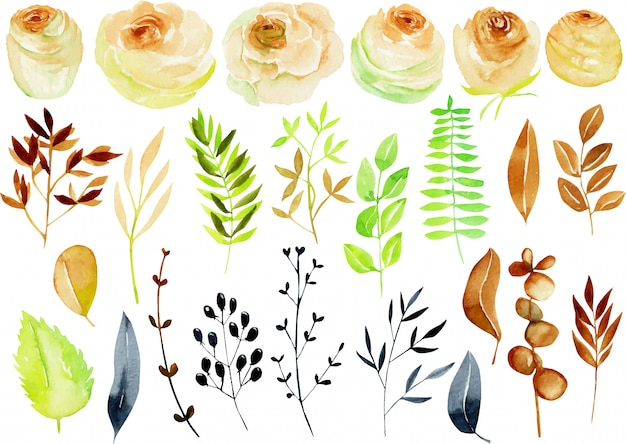 Watercolor tea roses, branches and leaves collection