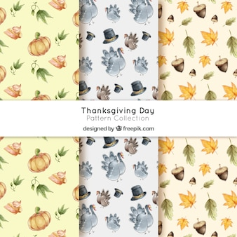 Watercolor thanksgiving patterns pack