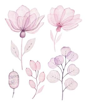 水彩画の透明な花と葉