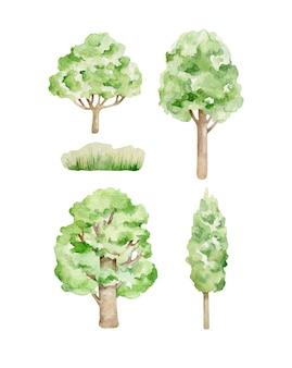 Акварельные деревья