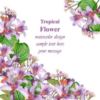 수채화 열대 꽃 아름다움 카드입니다. 빈티지 열 대 꽃 벡터
