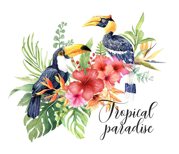 Watercolor tropical birds great hornbill and toucan.