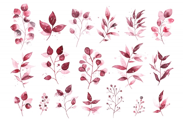 Watercolor tropical burgundy maroon leaves isolated