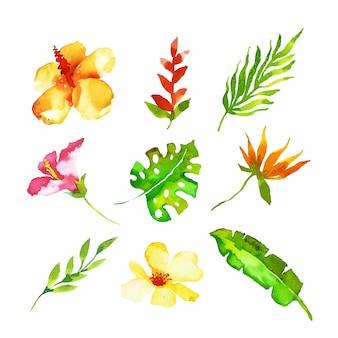 Акварель тропический цветок и набор листьев