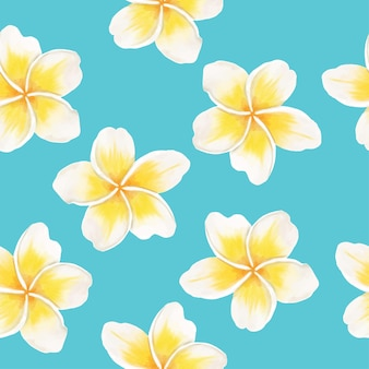 Watercolor tropical flower plumeria floral pattern abckground