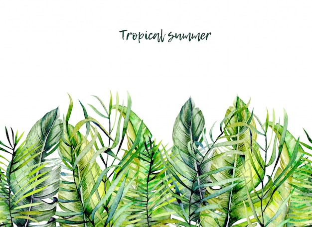 Watercolor tropical green leaves border