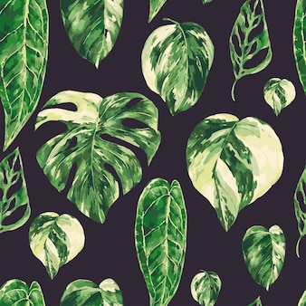 水彩トロピカルグリーンの葉のシームレスなパターン。モンステラ斑入りの緑の質感、植物の壁紙。