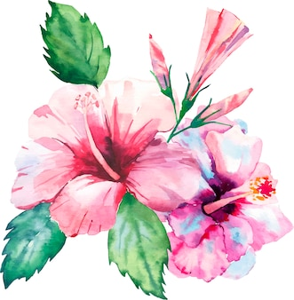 Watercolor tropical hawaii floral hibiscuses