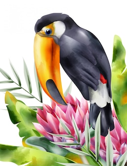 Watercolor tucano bird sitting in tropical flowers and green leaves