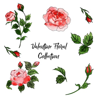 Watercolor valentine foral collection