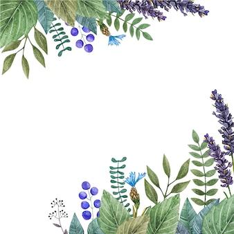 Акварель вектор кадра красочные полевые цветы.