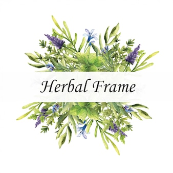 Watercolor vector herbal frame