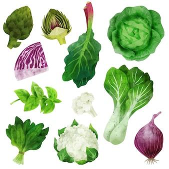 Акварельные овощи с артишоками, цветной капустой и пак-чой